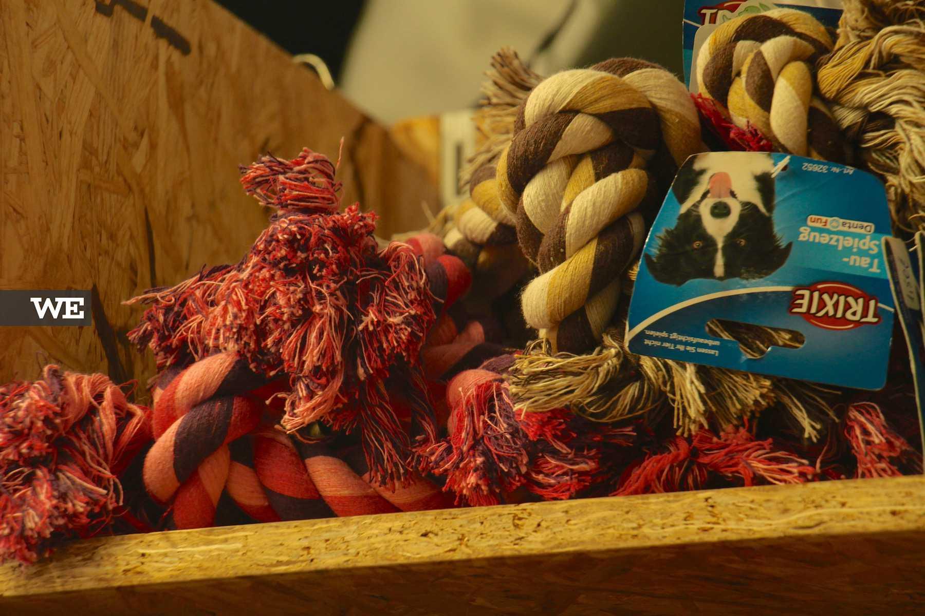 Brinquedos para o seu cão na Petbliss