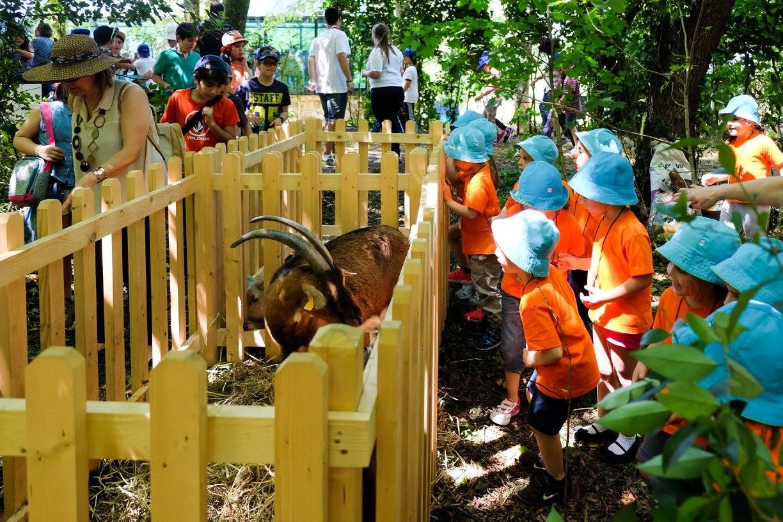 dia-mundial-da-criança-braga-2017-mosteiro-de-tibães