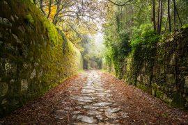 ITINERIS-trilhos-webraga