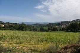 ITINERIS-trilhos-pelos prados do rio torto-webraga