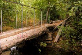 ITINERIS-trilhos-trilho dos bosques do rio este-webraga