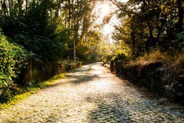 ITINERIS-trilhos-trilho do castro das caldas-webraga-monte das caldas