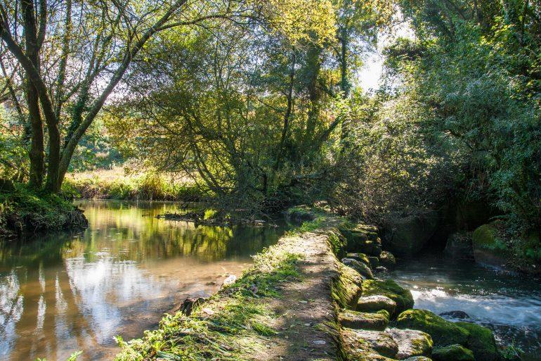 ITINERIS-trilhos-a volta do rio este-webraga