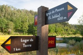 ITINERIS-trilhos-na senda do castelo de penafiel de bastuço-webraga