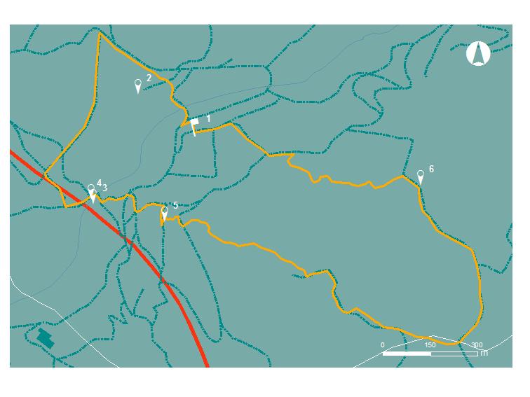 ITINERIS-trilhos-trilho da morreira-webraga