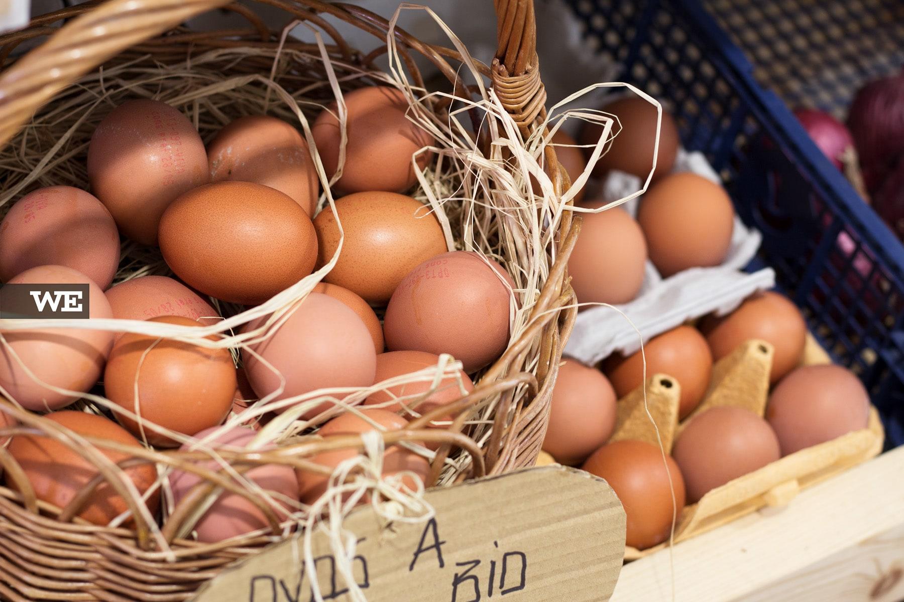 Ovos Biológicos Mercado Bio