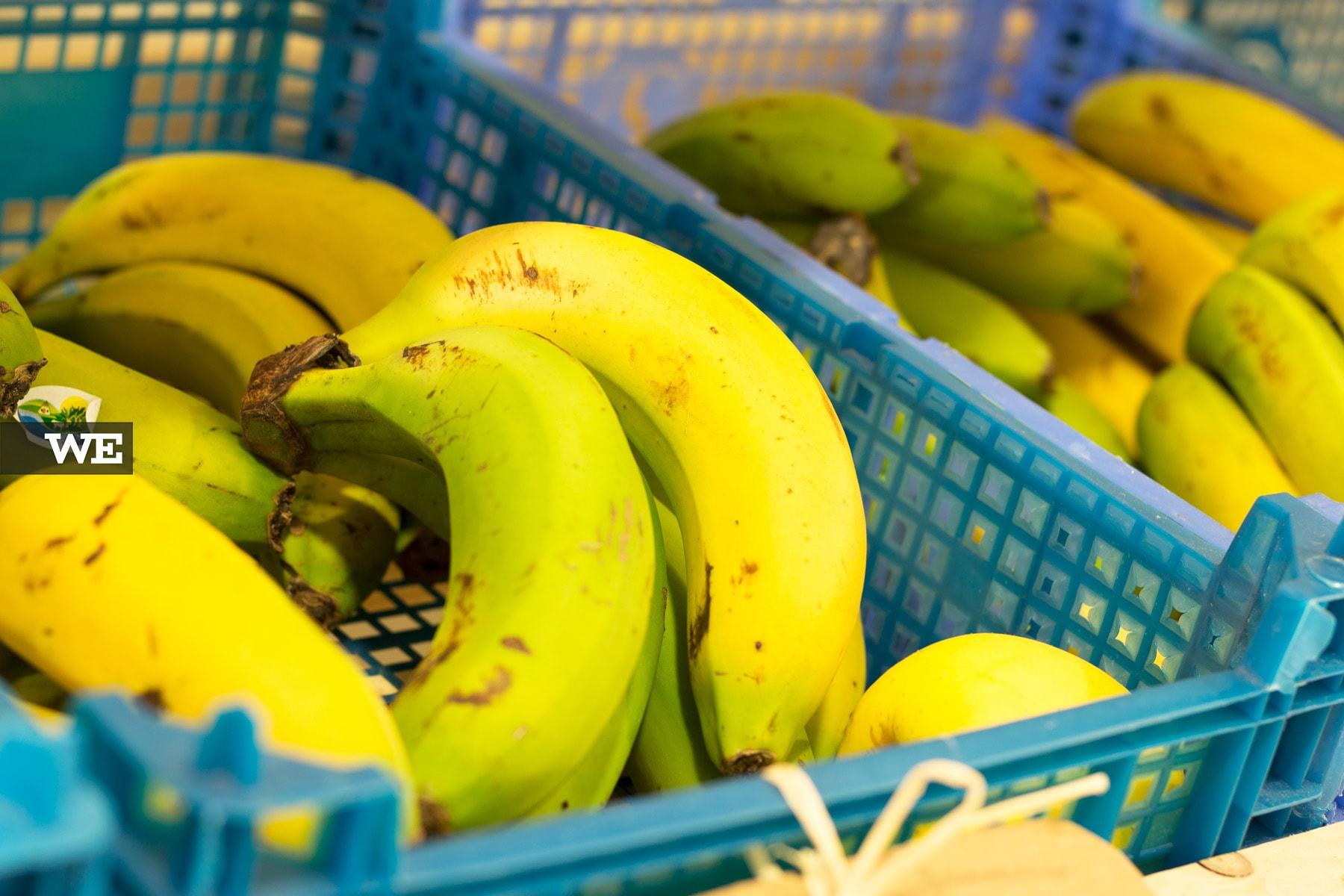 Bananas Biológicas Mercado Bio