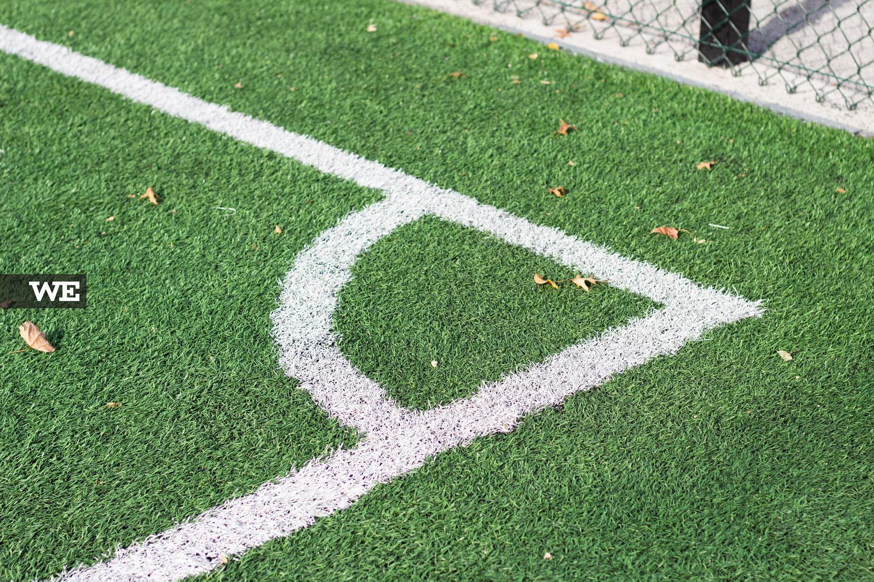 Relvado Parque Desportivo da Rodovia